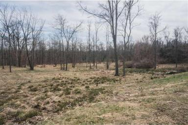 320 W CAMPING AREA RD #LOT 1 Photo #15