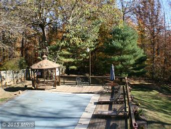 423 Rochelle School Lane Photo #13
