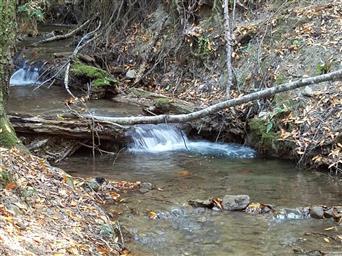 4750 Mill Creek Road Photo #14
