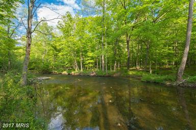 1389 Creek Road Photo #6