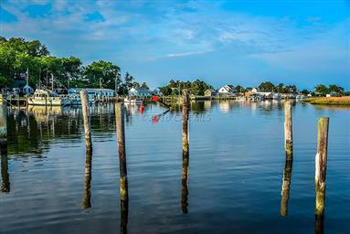 8407 Fishing Island Road Photo #39