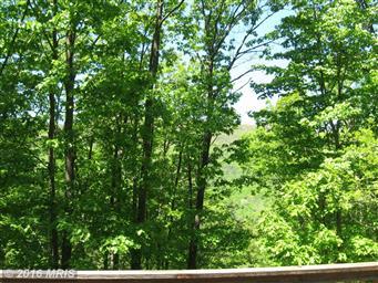 171 Bob White Trail Photo #6