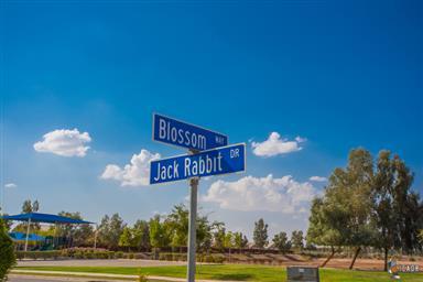 3699 Blossom Way Photo #40