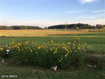 6211 Maryland Highway Photo #29