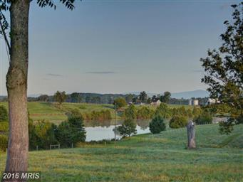 10074 High Point Road Photo #22