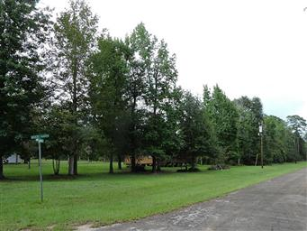 137 Wood Haven Photo #3