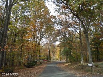 19434 White Pine Lane Photo #2