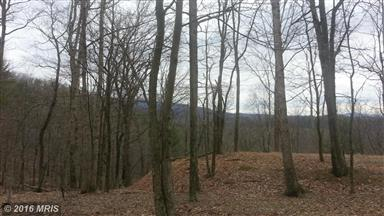 826 Pioneer Trail Photo #9