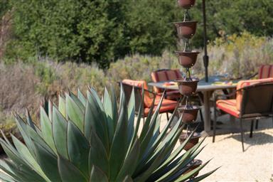 11740 Camino Escondido Road Photo #31
