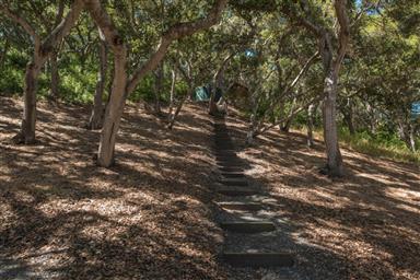 11740 Camino Escondido Road Photo #33