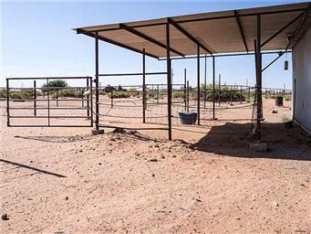 5434 Desert Willow Drive Photo #18