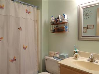 114 Weeping Willow Cove Photo #22