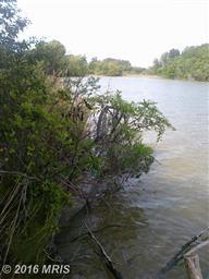16930 Bay Creek Lane Photo #4