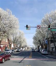 610 Walnut Street Photo #40