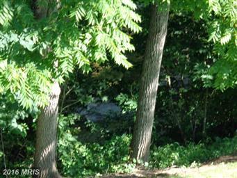8602 Orchard Drive Photo #21
