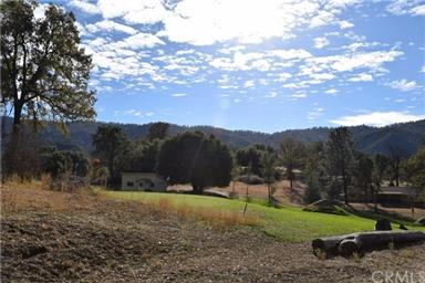40656 Goldside Drive Photo #29
