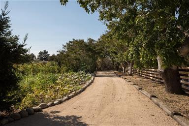 8990 Carmel Valley Road Photo #35