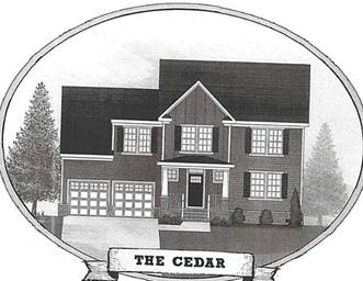 MM the Cedar Photo #3