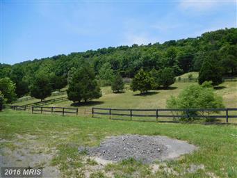 221 Private Ranch Road Photo #20