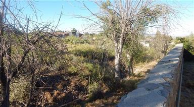 3213 El Morro Road Photo #20