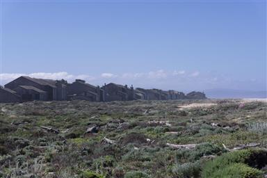 236 Monterey Dunes Way Photo #31
