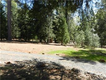 6095 Timber Ridge Drive Photo #44