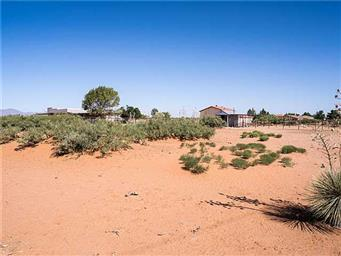 5434 Desert Willow Drive Photo #22