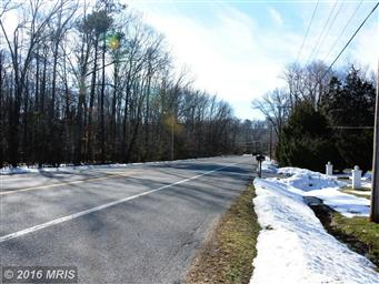 24245 COLTON POINT RD #ROAD Photo #20