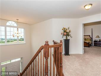 1180 Pearl Dr Photo #10