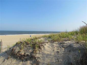 5405 Coastal Highway #409 Photo #39