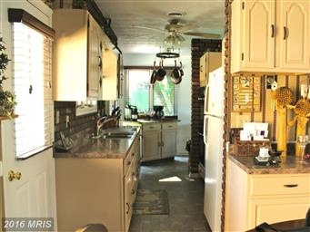 10622 Trotter Drive Photo #14
