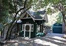 9419 Cedar Drive, Forest Falls, CA 92339
