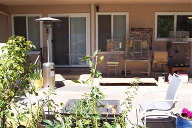 2655 Mediros Lane Photo #25
