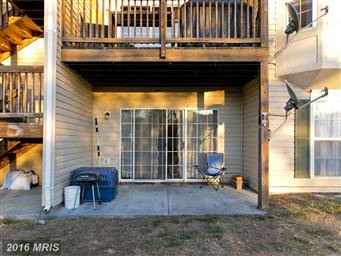 117 Brookland Terrace #3 Photo #25