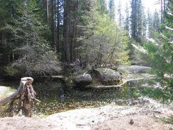 40 AC Chiquito Creek Photo #26