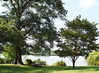 609 Lakeside Drive Photo #29