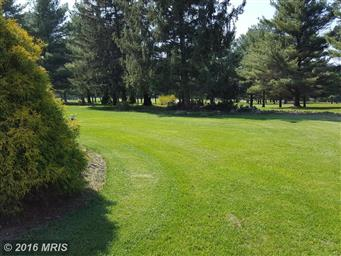 11435 Country Hill Court Photo #25