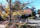 16 Plaza Lane, Selden, NY 11784