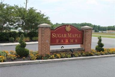 7731 Sugar Maple Way Photo #25