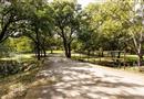 1603 Oakridge Trail, Bridgeport, TX 76426