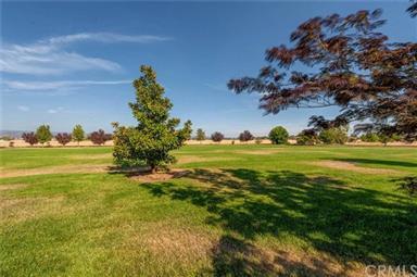 15101 Meridian Meadows Lane Photo #53
