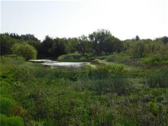 8411 River Run Drive Photo #11