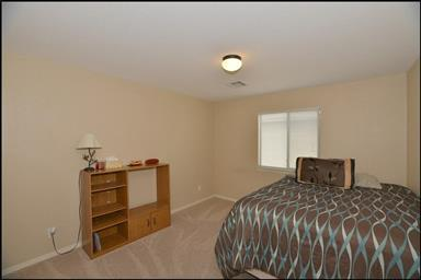 14250 Rattler Point Dr Photo #29