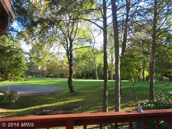 559 Tecumseh Trail Photo #6