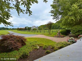 516 Goose Landing Farm Lane Photo #22