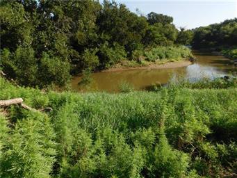 8411 River Run Drive Photo #21