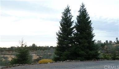 9 Windy Ridge Road Photo #46