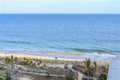 11700 Coastal Highway #T712 Photo #29