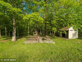 1389 Creek Road Photo #10