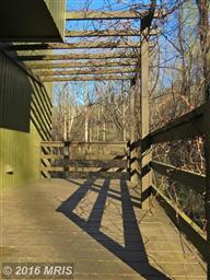 79 Hickerson Mountain Lane Photo #16